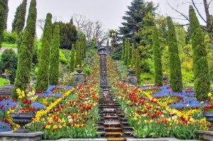 paisajes-coloridos-primavera15